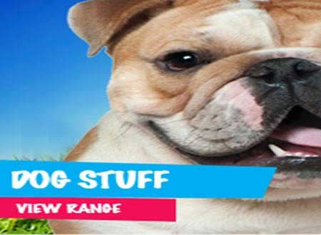 Dog Shop, Products, Store, Beds, Bedding, Toys, Food - Bondi Junction